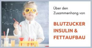 Blutzucker-Insulin-Fettaufbau
