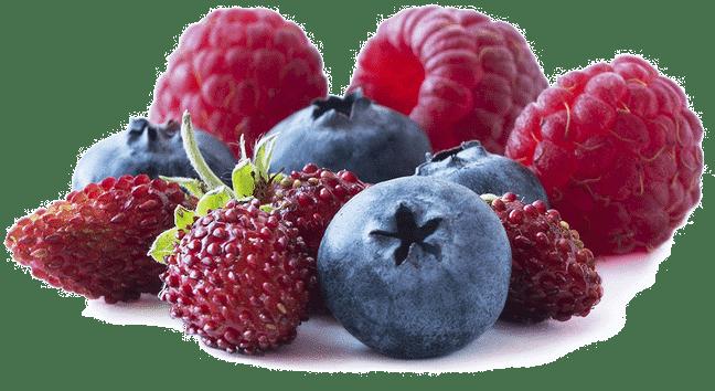 Heidelbeeren, Erdbeeren und Himbeeren - Obst mit wenigen Kohlenhydraten